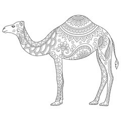 Doodle stylized camel. Sketch for coloring book, poster, print, or tattoo. Hand Drawn vector illustration doodle animal. Adult antistress coloring page.