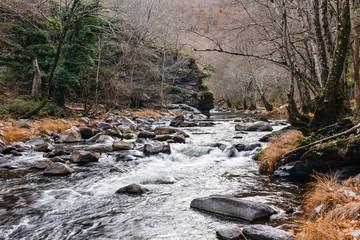 Río Cabrera. León, España. Paraje Canal Romano del pozo Moyabarba.