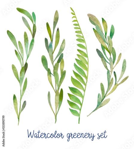 Watercolor Greenery Set Hand Drawn Wild Green Plants Isolated On White Background