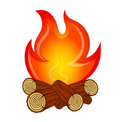 The fire on fire wood vector