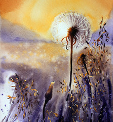 Handwork watercolor illustration. Dandelion at sunset.