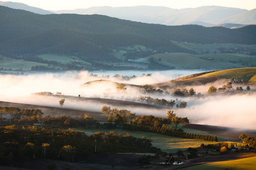 Poster de jardin Océanie Yarra Valley Fog at Sunrise