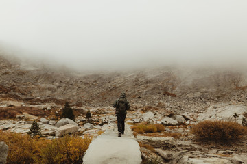 Rear view of male hiker hiking in misty valley, Mineral King, Sequoia National Park, California, USA