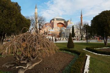 Hagia Sophia (Ayasofya) museum ,view from the Sultan Ahmet Park in Istanbul, Turkey