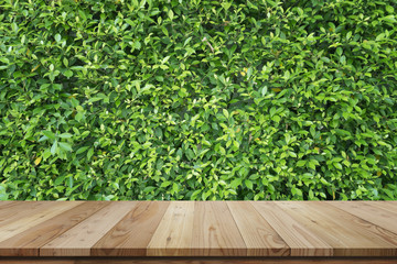 Empty top shelves or table on Bamboo leaf green wall background.For put product and some thing