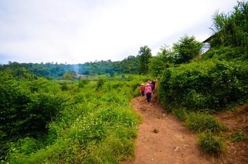 Aussicht auf den Dschungel in Chiang Mai, Thailand