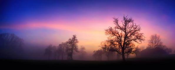 Photo sur Plexiglas Noir Bunte Dämmerung am Land im Winter, mit Silhouetten der Bäume und rosa Wolken