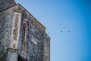 L'Abbaye de Montmajour près d'Arles