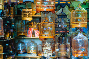 A store full of bird cages.