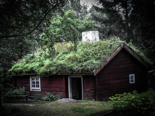A moss covered forest house.
