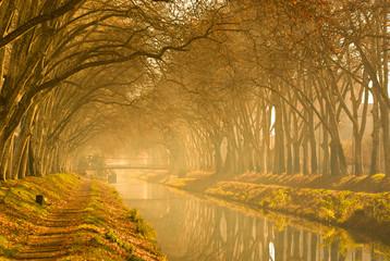 Canal Du Midi in autumn, France.