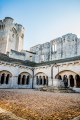 Femme dans le cloitre de l'Abbaye de Montmajour près d'Arles