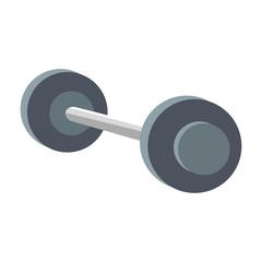 dumbbell gym equipment over white background. vector illustration