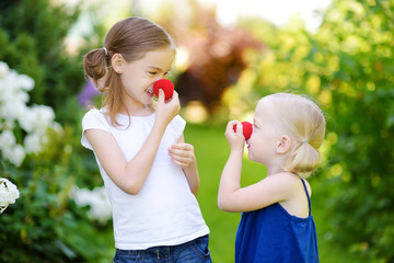 Happy little sisters wearing red clown noses