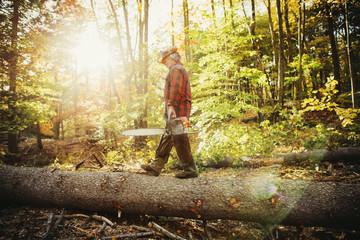 Side view of lumberjack walking on log in forest