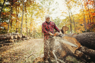 Lumberjack cutting log with chainsaw in forest