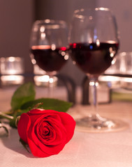 Red rose in a romantic dinner setting.