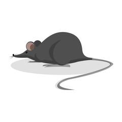 black mouse illustration design