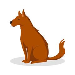 dog color illustration design