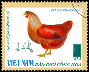 VIETNAM - CIRCA 1968: postal stamp printed in Vietnam shows hen, a series of domestic fowl