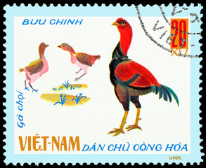 VIETNAM - CIRCA 1968: postage stamp printed in Vietnam shows Fighting Cocks, a series of domestic fowl