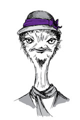 Hand Drawn Fashion Portrait of ostrich Hipster.