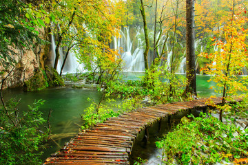 Wall Murals Road in forest Wooden tourist path in Plitvice lakes national park