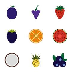 Orchard fruits icons set, flat style