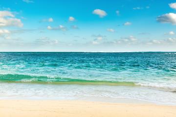 Sandy tropical beach.