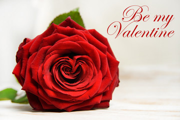 Be my Valentine text with red rose. Valentine's day background with copy space