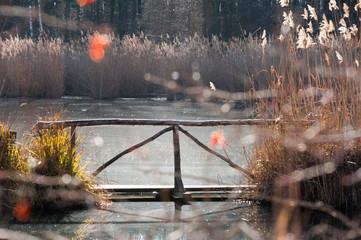 Steg über Teich