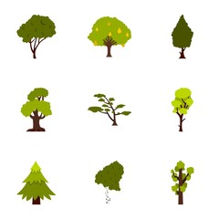 Arboreal plant icons set, flat style