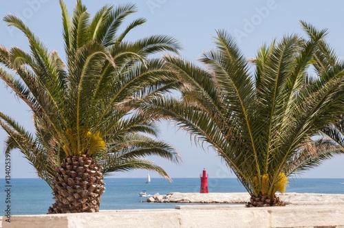 Palme Con Mare Barca E Faro Sullo Sfondo Stock Photo And Royalty