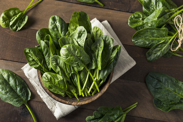 Raw Green Healthy Organic Spinach