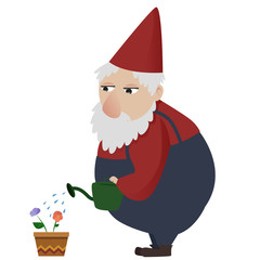Classic gardening gnome giving water to a flower
