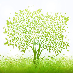 Green nature background with tree and grass vector