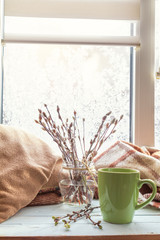 Cup of coffee, books, branch of willow tree in glass jar, wool blanket on windowsill. In the background frosty pattern on window. Cozy home concept.