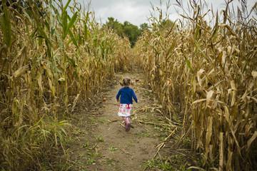 Rear view of girl walking on field amidst plants