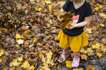 Low section of girl playing with maple leaves while standing on field