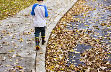 Rear view of boy walking on footpath during autumn