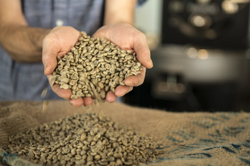 Cropped image of man holding coffee beans