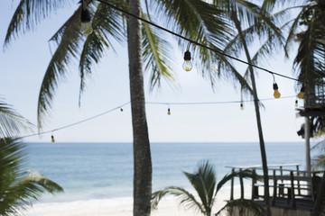 Light bulbs hanging on palm trees at beach