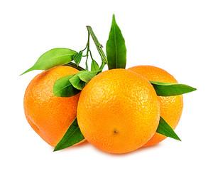 tangerine or mandarin fruit isolated on white