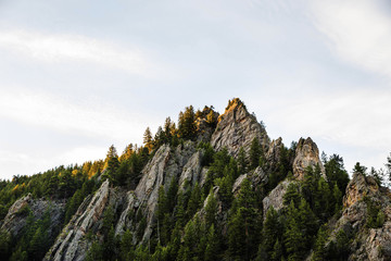 View of mountain with trees against sky Wall mural