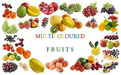 set of various fruits as background