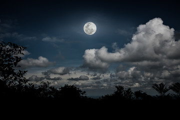 Silhouettes of tree and nighttime sky with clouds, bright full moon