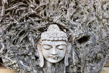 Face of Buddha carved from the wood (tree trunk) surrounded by roots, Indonesia