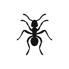 ant icon illustration