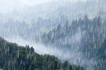 Rain over forest mountains.