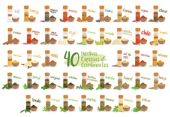 Set of 40 different culinary herbs, species and condiments in cartoon style. Spanish names.